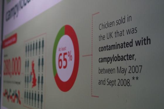 FSA Campylobacter Campaign 2014